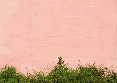Rothko Graffiti Screen Untitled #12